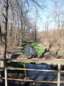 Rzeczka w dzielnicy Devau Kaliningrad
